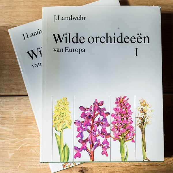 Wilde Orchideen van Europa by J.Landwehr