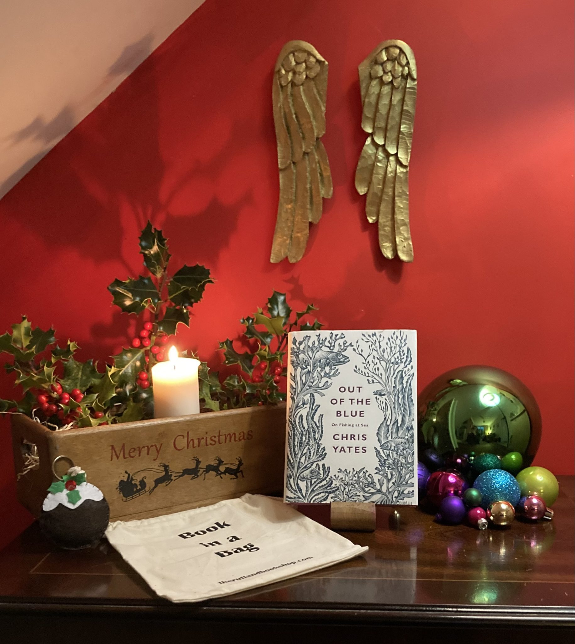 Christmas Book In A Bag: Out Of The Blue